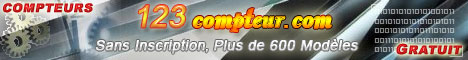 plus de 600 compteurs gratuits, sans inscription!